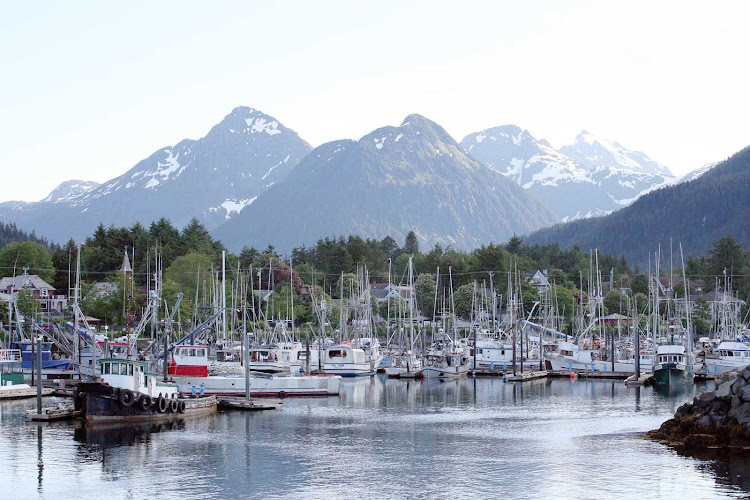 Sitka Harbor is always bustling with boats.