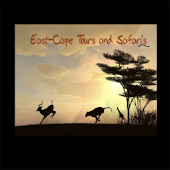 East Cape Tours and Safari's