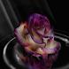 Rose Art Live Wallpaper