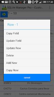 SQLite Manager Pro - screenshot thumbnail