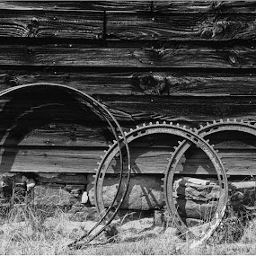 Rings, Adirondacks NY, 1986 by David Goss - Black & White Objects & Still Life ( b&w, wood, texture, line, circle, gears, sfx, adirondack mtns, 2nd take, barn, metal, sep2, sidelight )