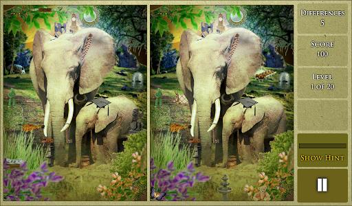 Hidden Difference - Wildlife