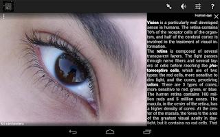 Screenshot of Cozmic Zoom