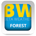 BW Forest UCCW skin icon
