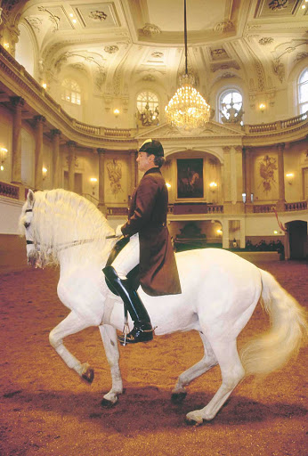 spanish-riding-school-in-vienna - The Spanish Riding School in Vienna, Austria.