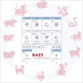 Bazi Lite(Chinese Astrology)