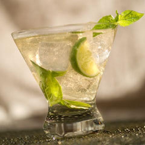 mint basil cucumber lime fizz basil cucumber mint and basil cucumber ...