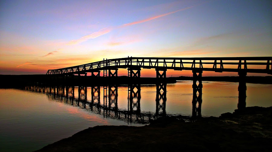 by Matthew Grice - Landscapes Sunsets & Sunrises ( color, black and white, sunset, sea, ocean, beach, sunrise, bridge, waterscapes, canal, boardwalk, cape cod,  )