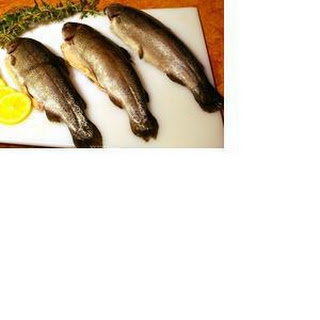 Grilled Trout with Parsley