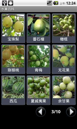 【免費生活App】水果百科-APP點子