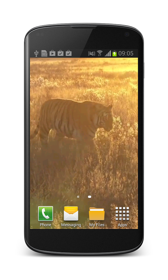 Tiger Free Video Wallpaper- screenshot