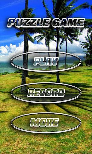 ハワイ島のパズル