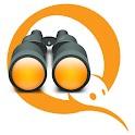 QIWI Observer logo