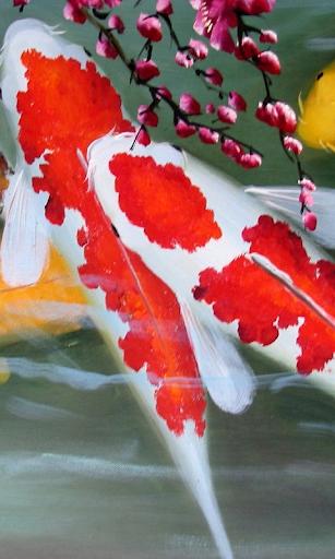 錦鯉動態壁紙