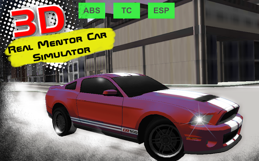 Real Mentor Car Simulator