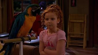 The Parrot Trap