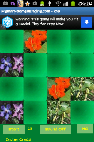 Medicinal plants - memory game - screenshot