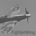 FighterWing Free icon