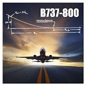 B737-800 Landing