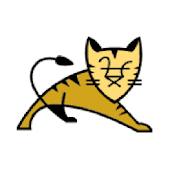 Tomcat Administrator