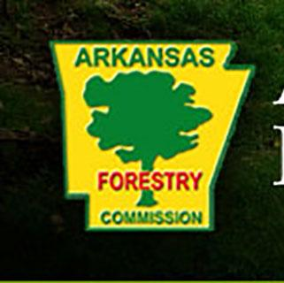 AFC Tree Inspection