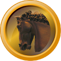 Horse Head Clock icon