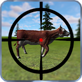 Real Cow Hunt