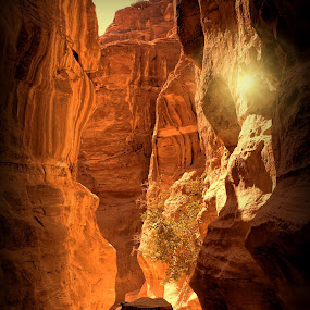 THE STREET OF PETRA by Leon Zaragoza - Landscapes Caves & Formations (  )