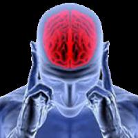 Pratik Beyin Egzersizleri 2.5