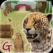 Animal Run :Cheetah 3D