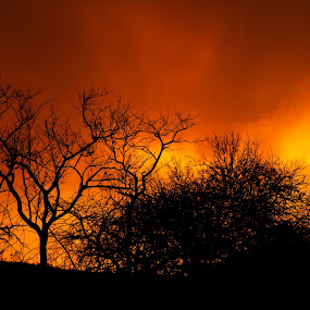 Ghost rain at sunset by Tony Wilson - Landscapes Sunsets & Sunrises ( sunset, ghost rain, pilansberg, manyane camp )