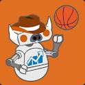 Texas Football & Basketball logo