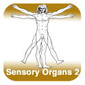 Anatomy - Sensory Organs 2 icon