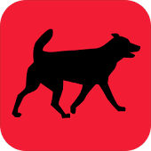 Dog Wallpaper Gallery
