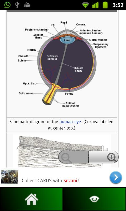 Anatomy Guide (Pocket Book) - screenshot