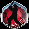 Box Cricket International 2016 icon
