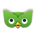 Duolingo Widget icon