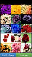 Screenshot of Beautiful Roses HD Wallpapers