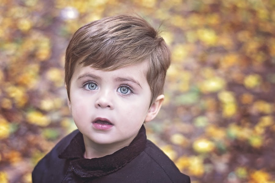 bright eyes by Melissa Marie Gomersall - Babies & Children Toddlers ( orange, bright, autumn, fall, leaves, eyes,  )