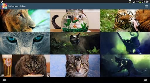 【免費個人化App】Wallpapers HD Pro-APP點子