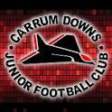 CDJFC icon
