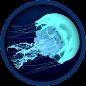 Ocean Jellyfish Live Wallpaper