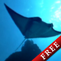 Flying Manta Free icon