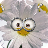 Despicable Flowers Memory