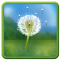 Dandelion Field LWP icon