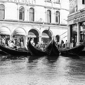 Taxis at the Rock Cafe if Venice by Nicola Ibba - Transportation Boats ( urban, gondola, hard rock cafe, transporation, venice, tourism, boat, italy )