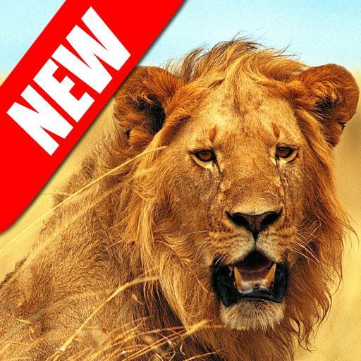 野生獅子攻擊3D模擬器 模擬 App LOGO-APP試玩