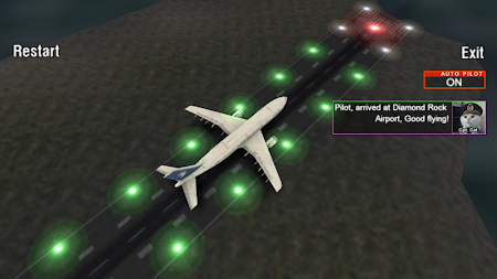 Airplane Night Flight Time Sim 1 screenshot 88014