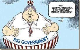 Obesity of Government