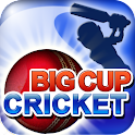 Big Cup Cricket Free logo